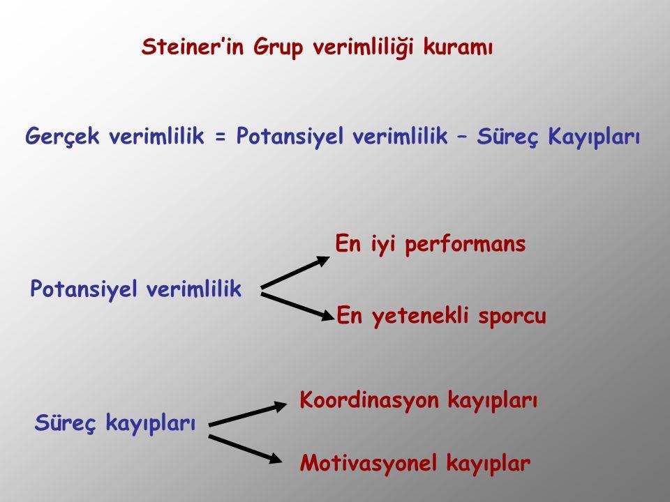 Steiner'in Grup verimliliği kuramı