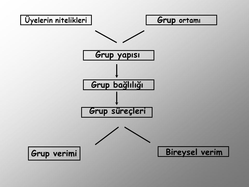Grup ortamı Grup yapısı Grup bağlılığı Grup süreçleri Bireysel verim
