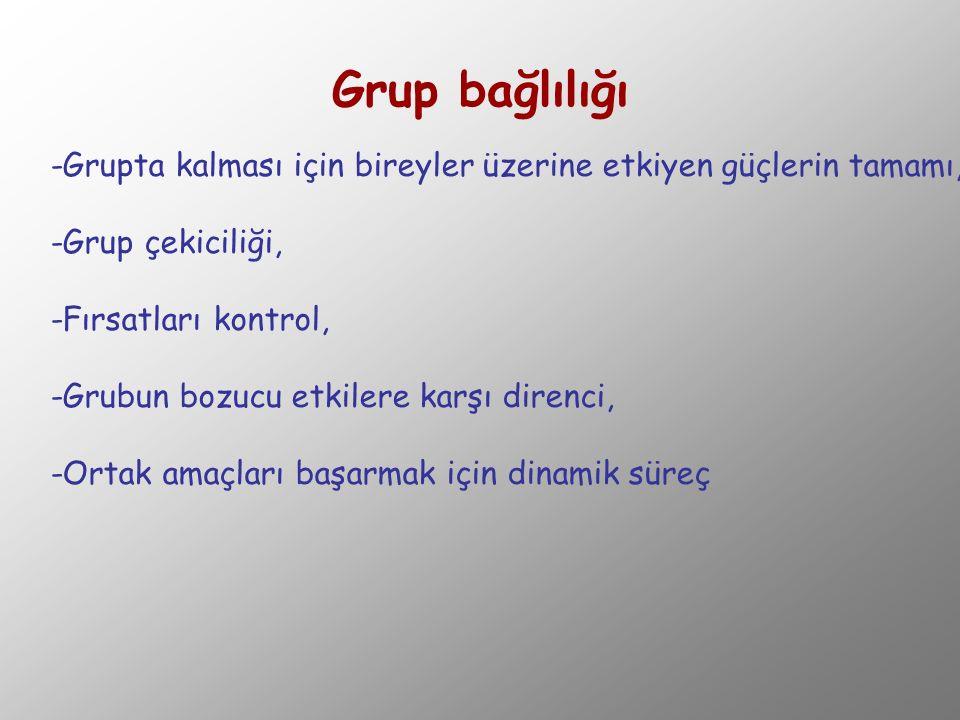 Grup bağlılığı -Grupta kalması için bireyler üzerine etkiyen güçlerin tamamı, -Grup çekiciliği, -Fırsatları kontrol,