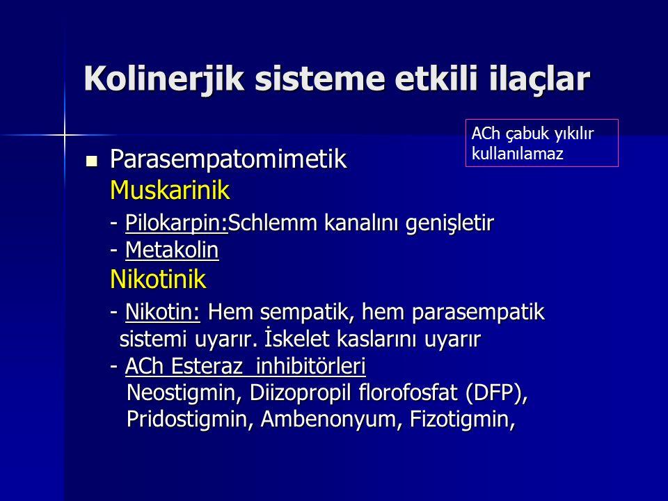 Kolinerjik sisteme etkili ilaçlar