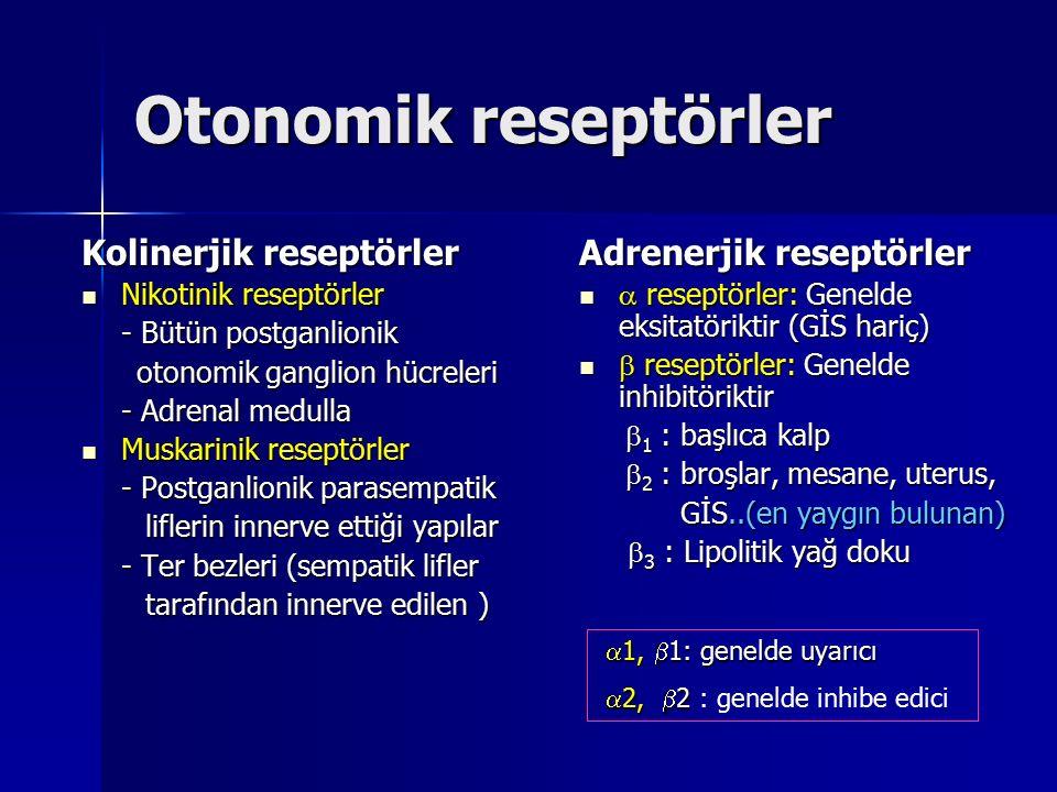 Otonomik reseptörler Kolinerjik reseptörler Adrenerjik reseptörler