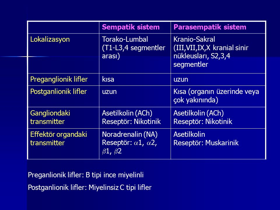 Sempatik sistem Parasempatik sistem. Lokalizasyon. Torako-Lumbal. (T1-L3,4 segmentler arası) Kranio-Sakral.