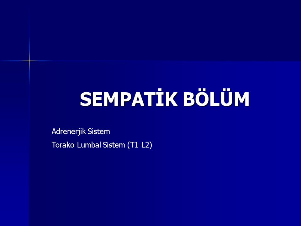 SEMPATİK BÖLÜM Adrenerjik Sistem Torako-Lumbal Sistem (T1-L2)