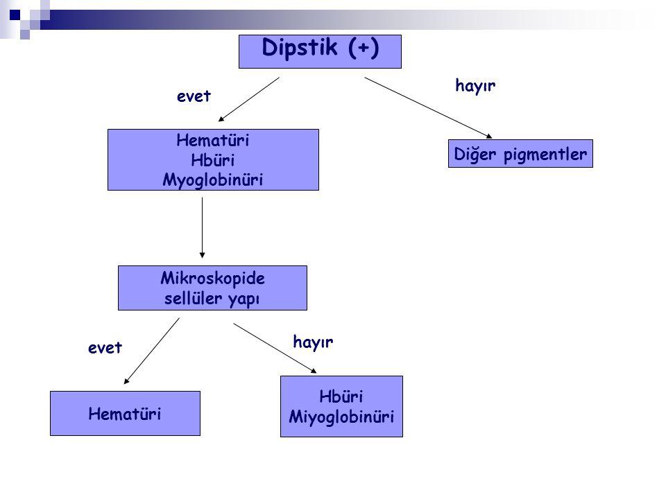 Dipstik (+) hayır evet Hematüri Hbüri Diğer pigmentler Myoglobinüri