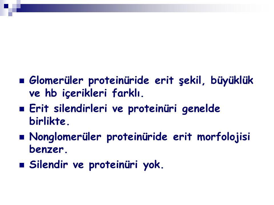 Glomerüler proteinüride erit şekil, büyüklük ve hb içerikleri farklı.