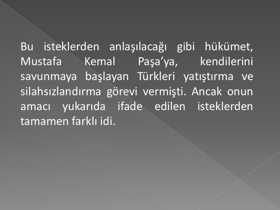 Bu isteklerden anlaşılacağı gibi hükümet, Mustafa Kemal Paşa'ya, kendilerini savunmaya başlayan Türkleri yatıştırma ve silahsızlandırma görevi vermişti.