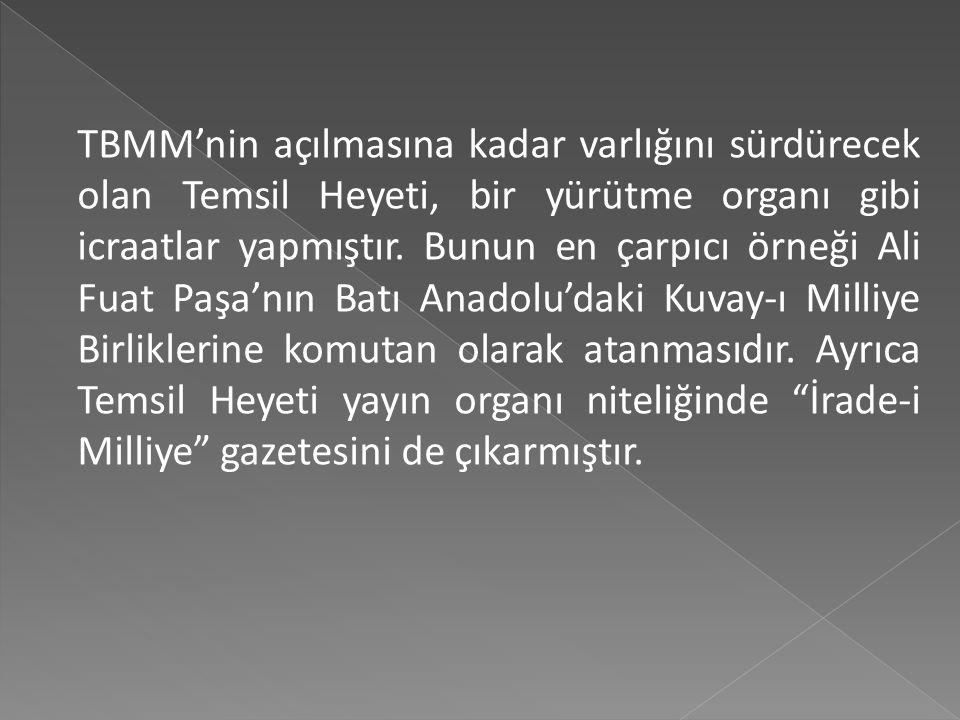 TBMM'nin açılmasına kadar varlığını sürdürecek olan Temsil Heyeti, bir yürütme organı gibi icraatlar yapmıştır.