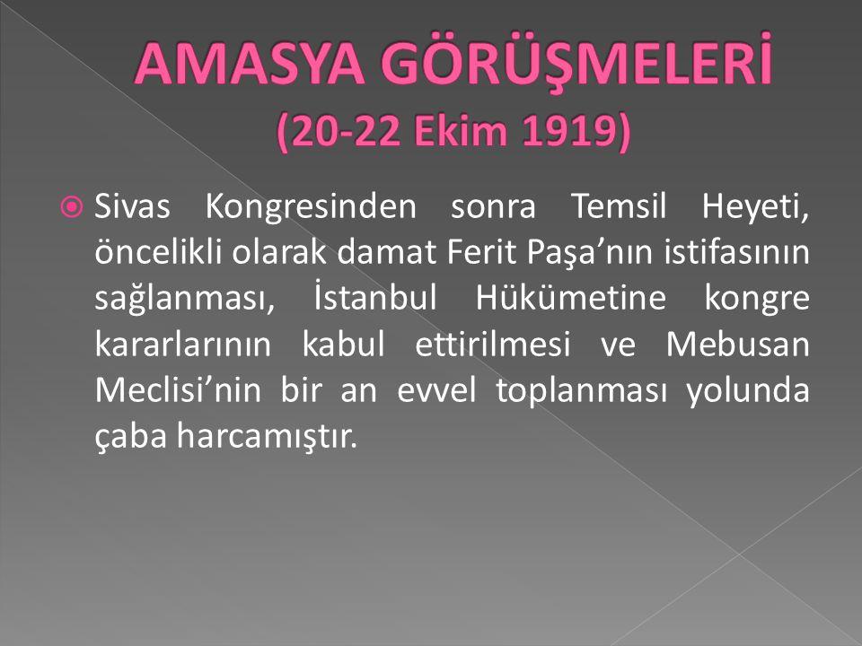 AMASYA GÖRÜŞMELERİ (20-22 Ekim 1919)