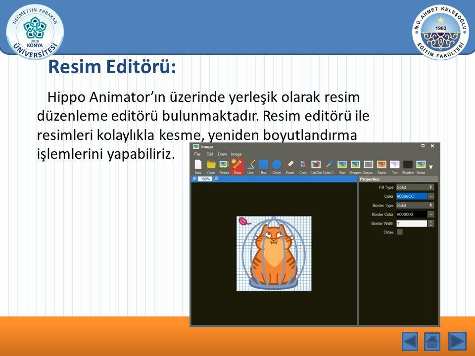 KONU BAŞLIĞI Resim Editörü: