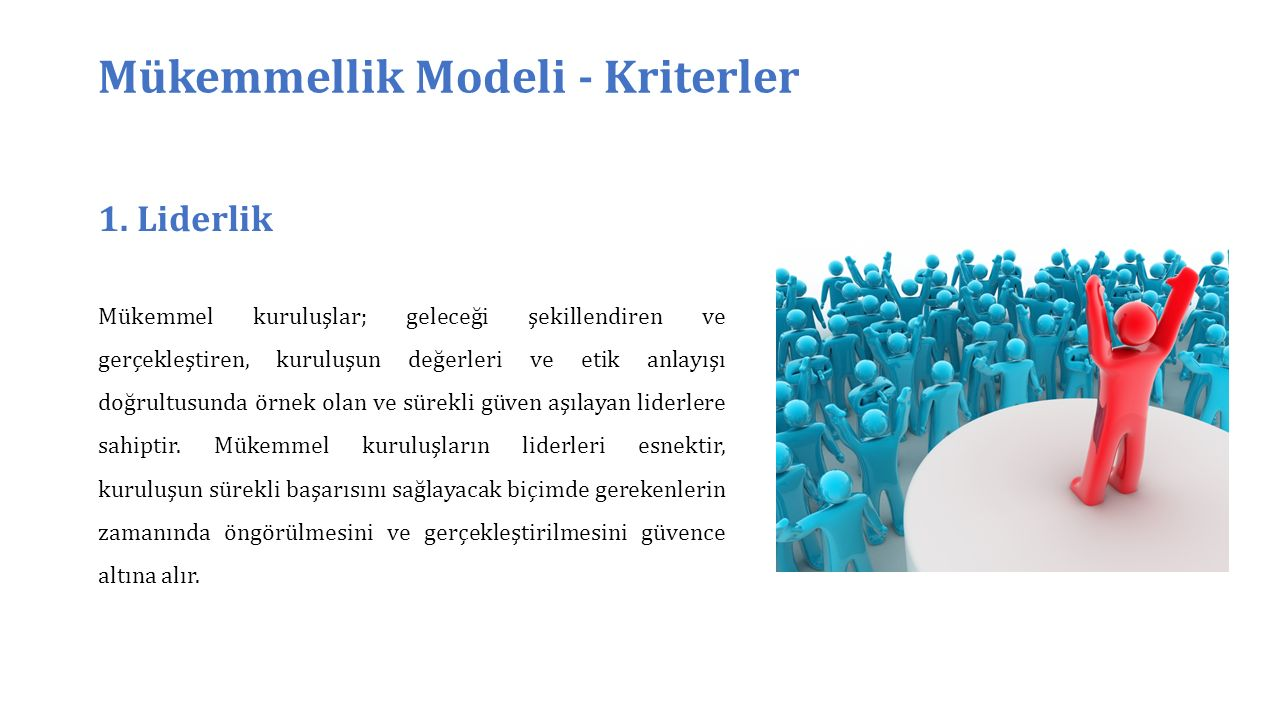 Mükemmellik Modeli - Kriterler