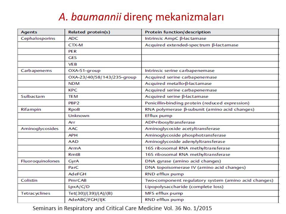 A. baumannii direnç mekanizmaları