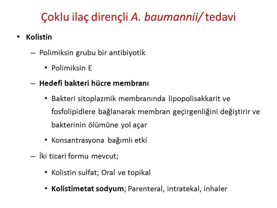 Çoklu ilaç dirençli A. baumannii/ tedavi