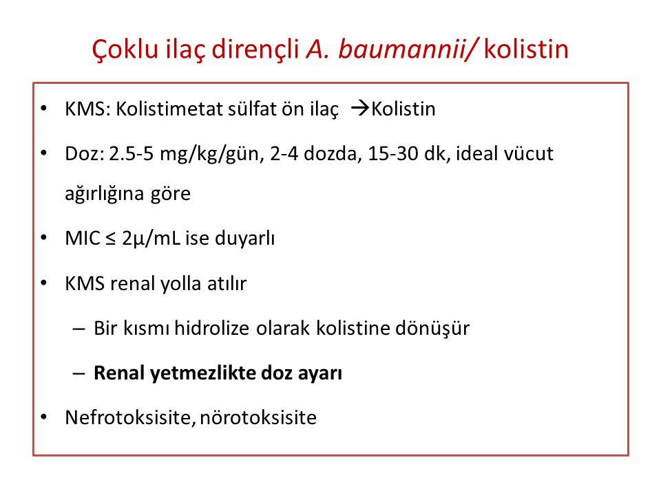 Çoklu ilaç dirençli A. baumannii/ kolistin