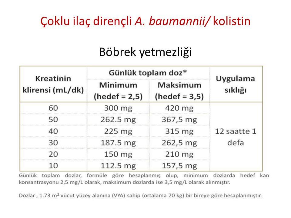 Çoklu ilaç dirençli A. baumannii/ kolistin Böbrek yetmezliği