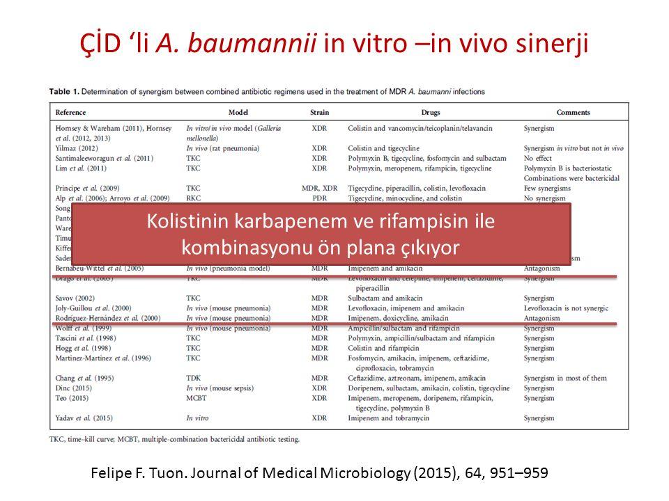 ÇİD 'li A. baumannii in vitro –in vivo sinerji