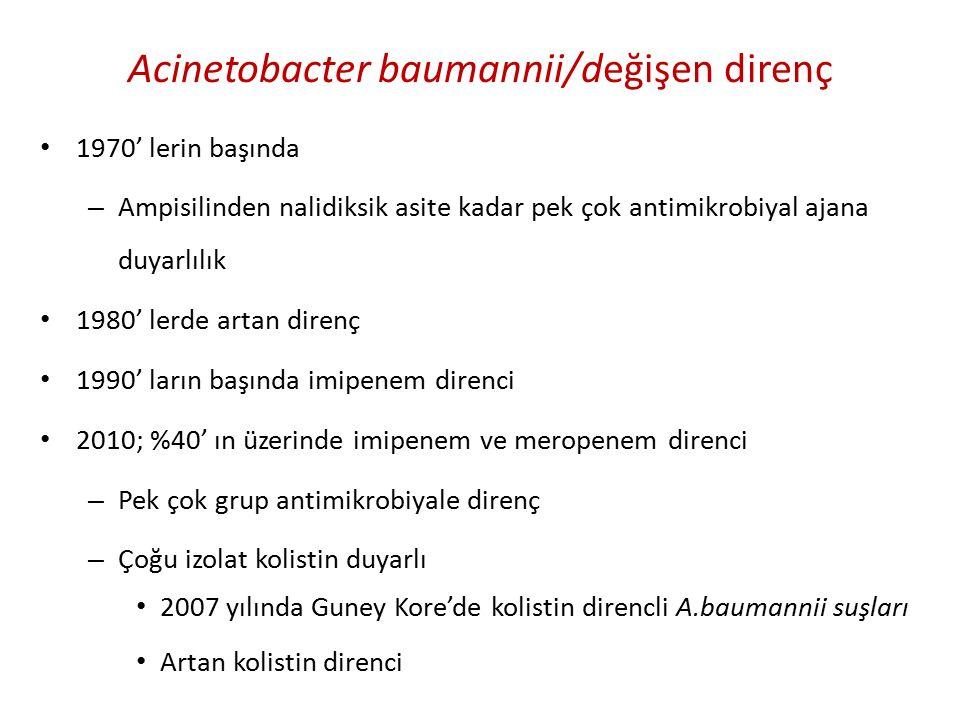 Acinetobacter baumannii/değişen direnç