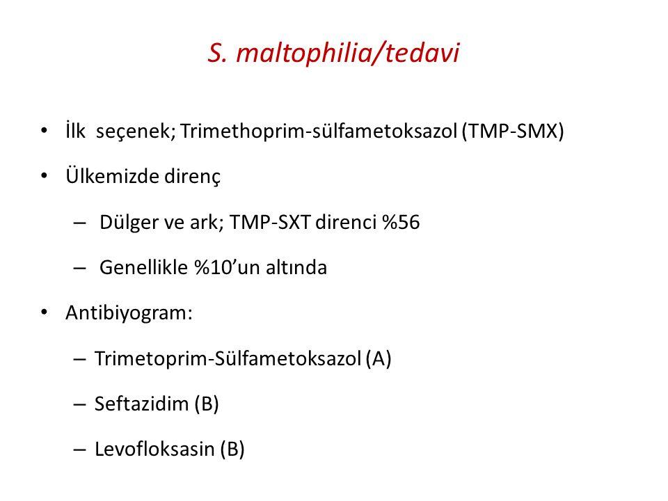 S. maltophilia/tedavi İlk seçenek; Trimethoprim-sülfametoksazol (TMP-SMX) Ülkemizde direnç. Dülger ve ark; TMP-SXT direnci %56.