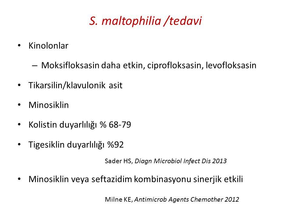 S. maltophilia /tedavi Kinolonlar