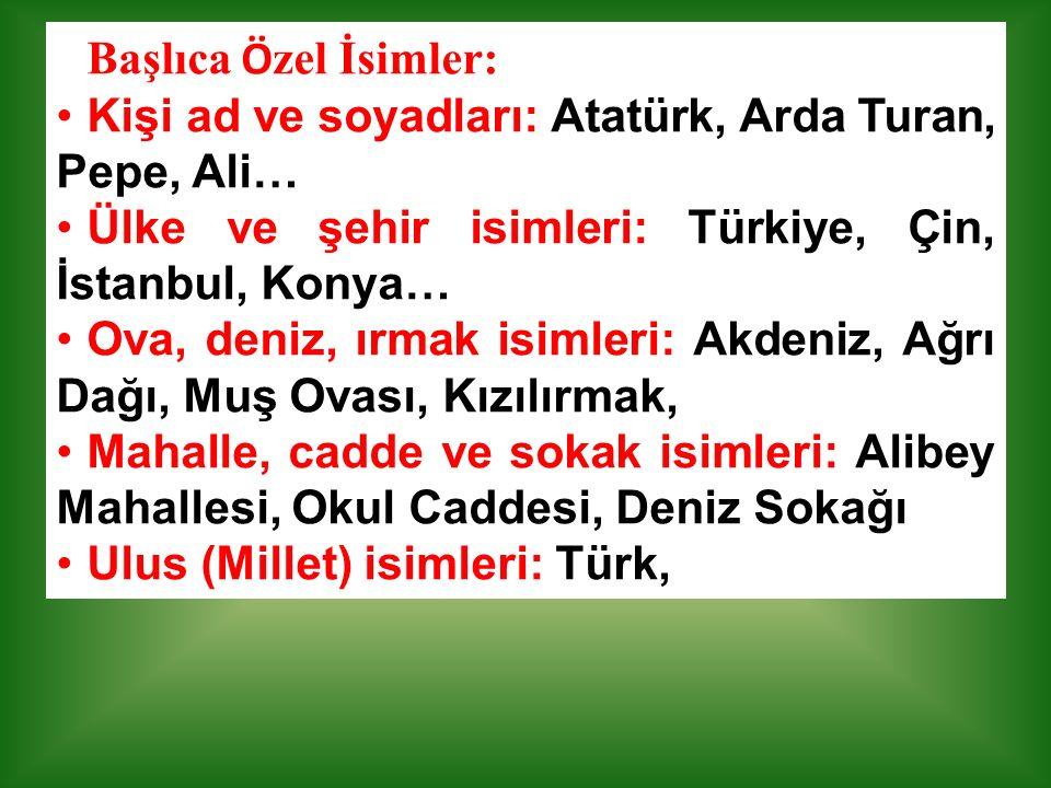Başlıca Özel İsimler: Kişi ad ve soyadları: Atatürk, Arda Turan, Pepe, Ali… Ülke ve şehir isimleri: Türkiye, Çin, İstanbul, Konya…