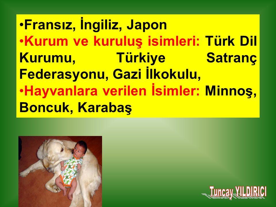 Fransız, İngiliz, Japon Kurum ve kuruluş isimleri: Türk Dil Kurumu, Türkiye Satranç Federasyonu, Gazi İlkokulu,