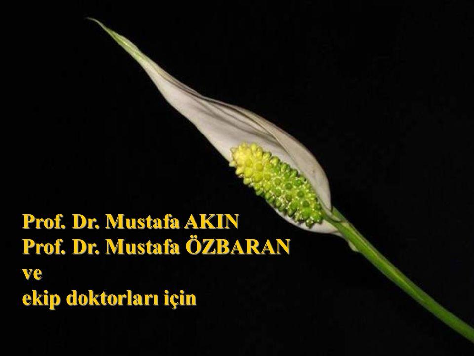 Prof. Dr. Mustafa AKIN Prof. Dr