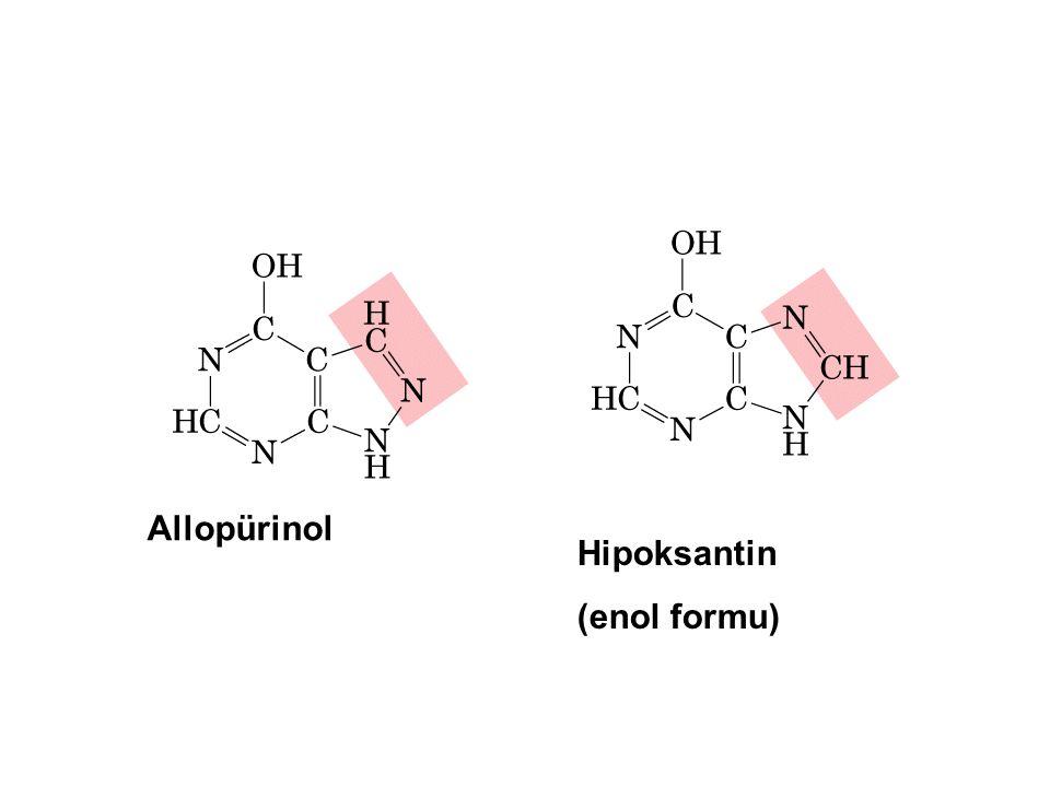 Allopürinol Hipoksantin (enol formu)