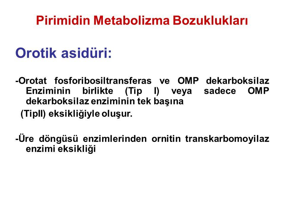 Pirimidin Metabolizma Bozuklukları