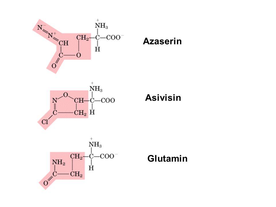 Azaserin Asivisin Glutamin