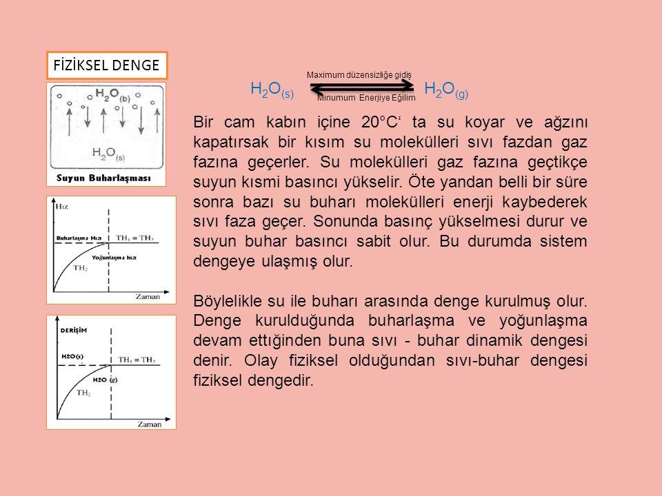 FİZİKSEL DENGE H2O(s) H2O(g)