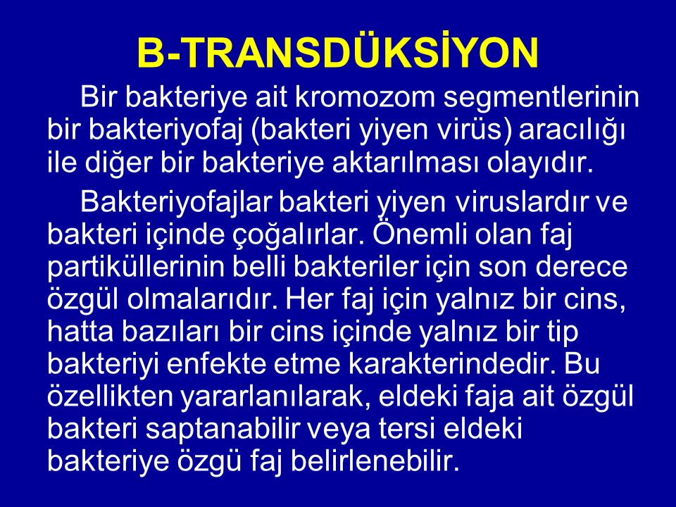 B-TRANSDÜKSİYON