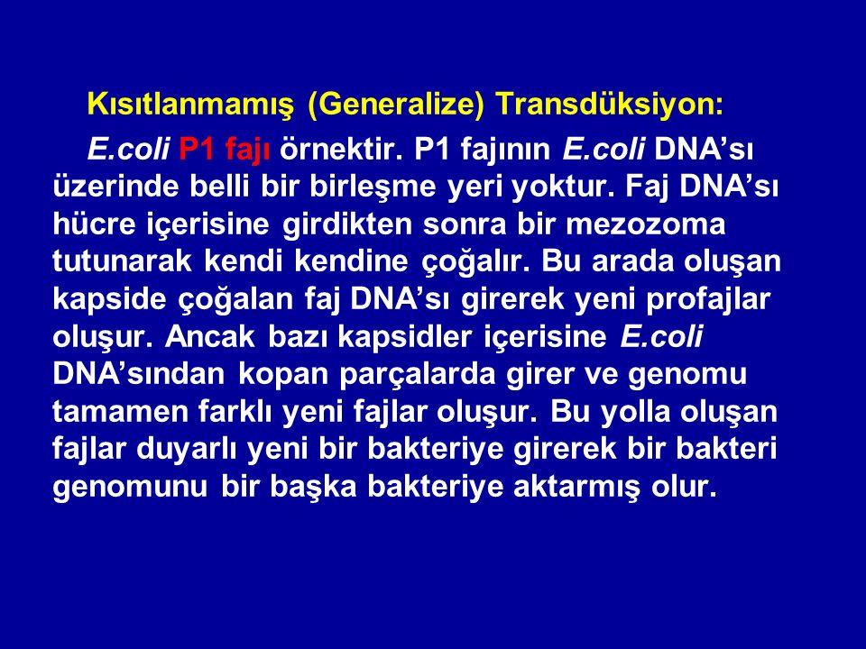 Kısıtlanmamış (Generalize) Transdüksiyon: