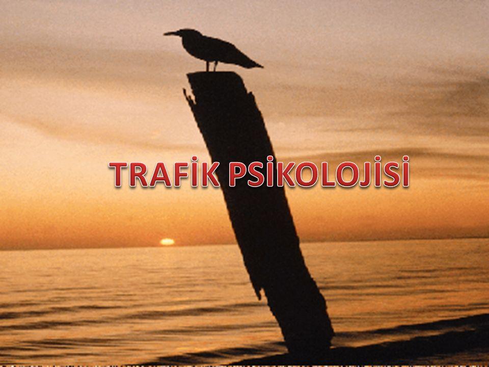 TRAFİK PSİKOLOJİSİ www.cemalsahin.comwww.cemalsahin.com