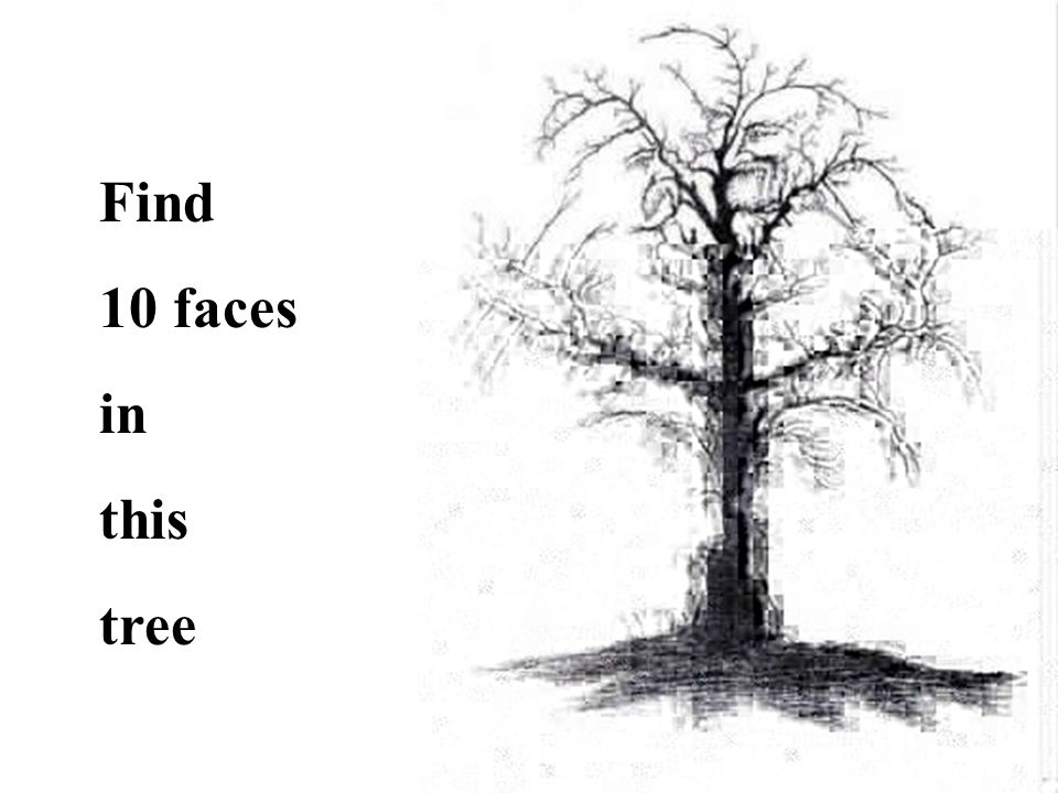 Find 10 faces in this tree