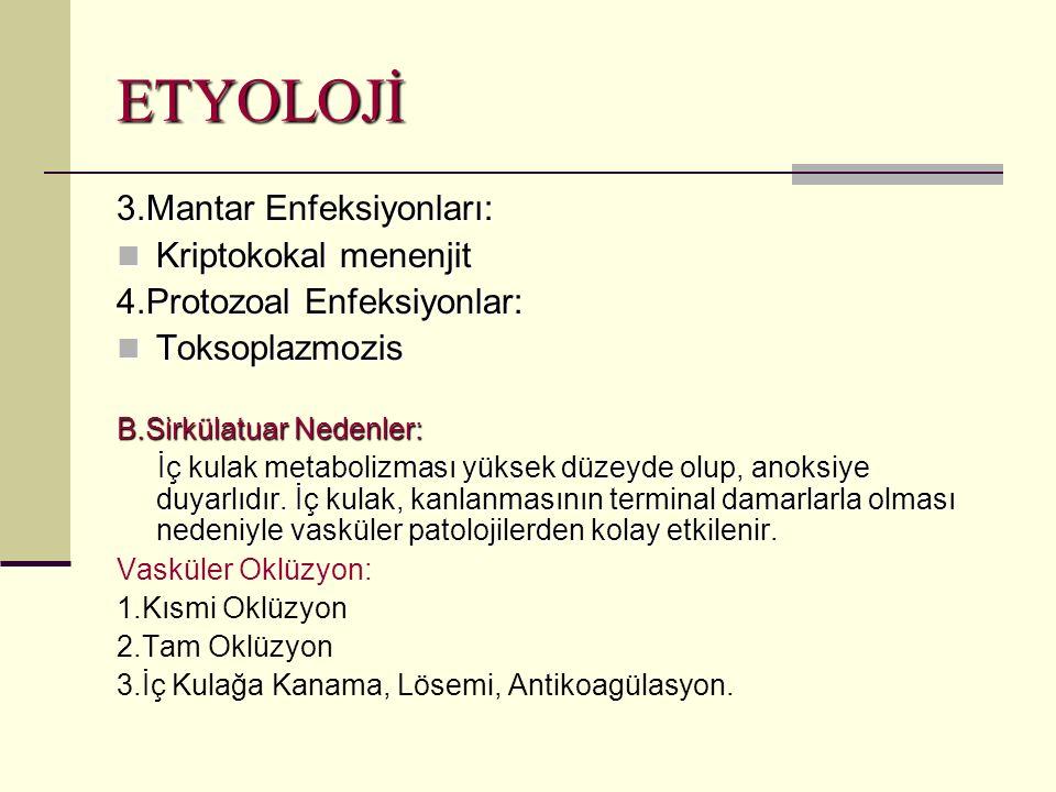 ETYOLOJİ 3.Mantar Enfeksiyonları: Kriptokokal menenjit