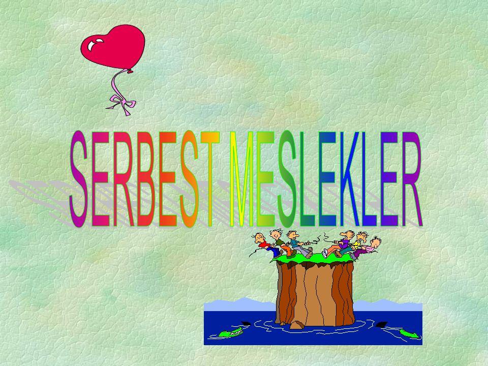 SERBEST MESLEKLER