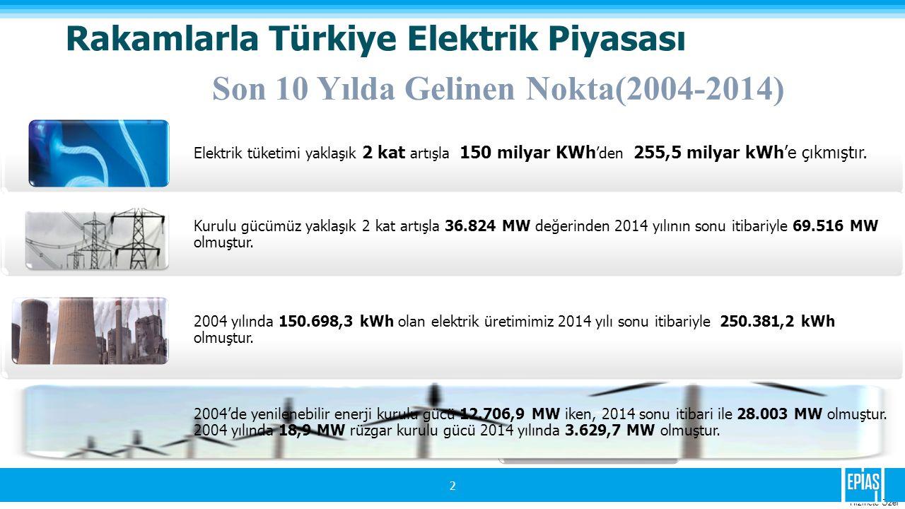 Rakamlarla Türkiye Elektrik Piyasası