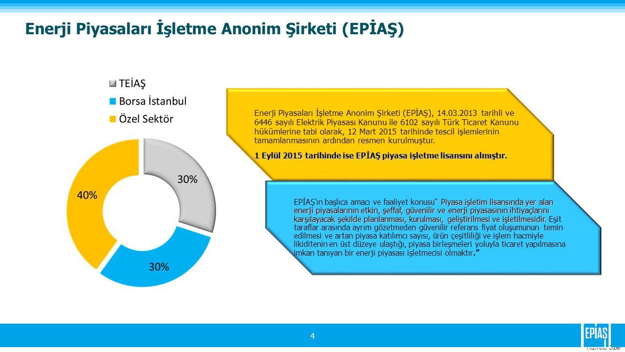 Enerji Piyasaları İşletme Anonim Şirketi (EPİAŞ)