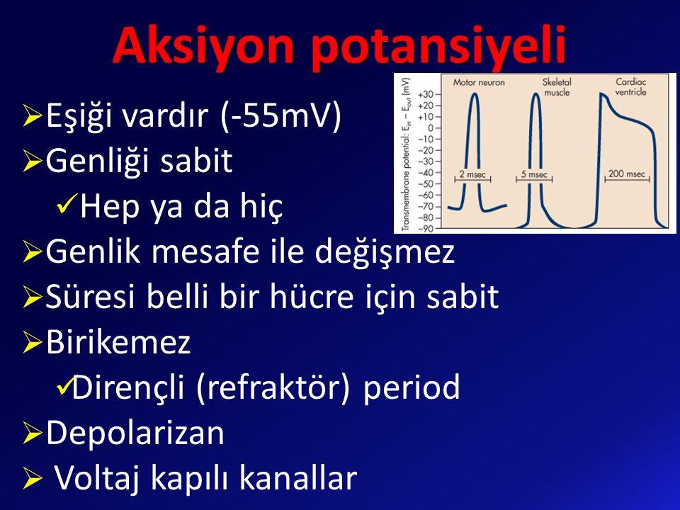 Aksiyon potansiyeli Eşiği vardır (-55mV) Genliği sabit Hep ya da hiç