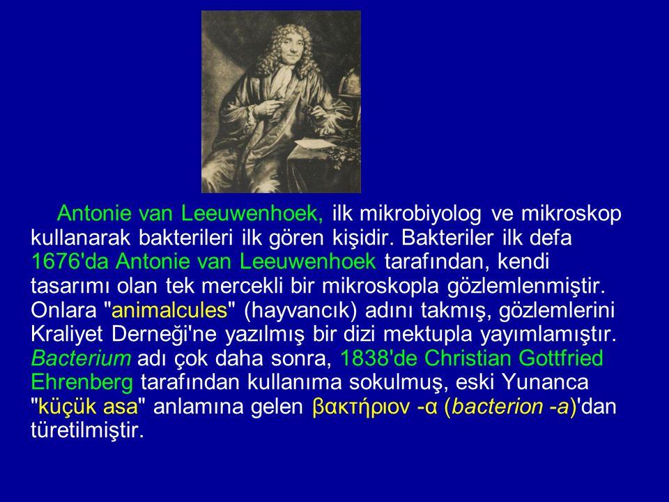 Antonie van Leeuwenhoek, ilk mikrobiyolog ve mikroskop kullanarak bakterileri ilk gören kişidir.