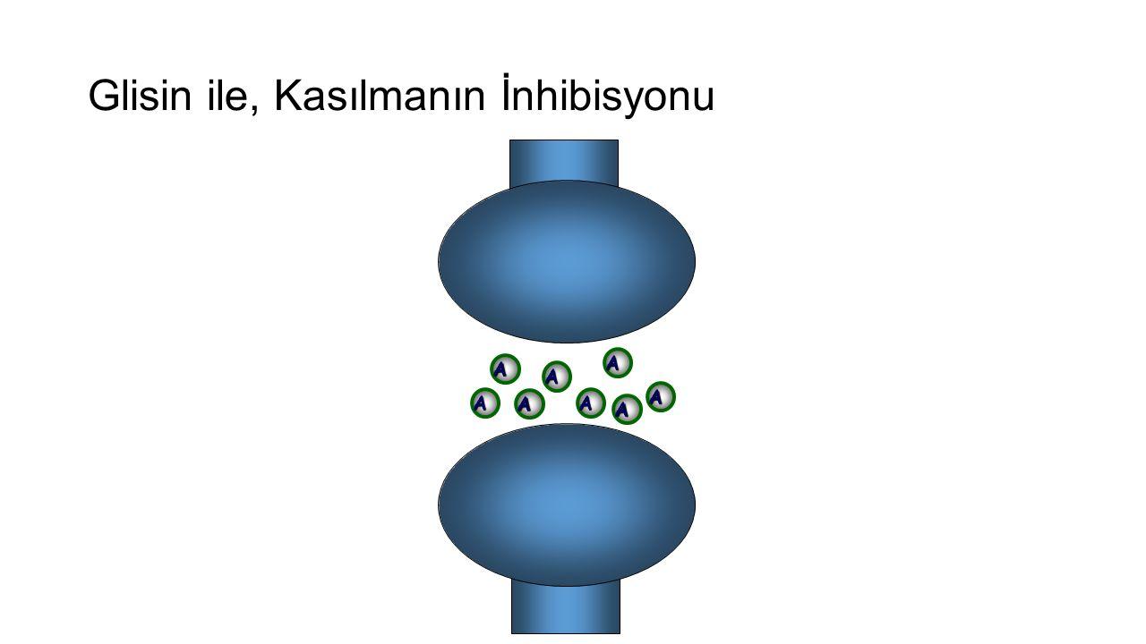Glisin ile, Kasılmanın İnhibisyonu