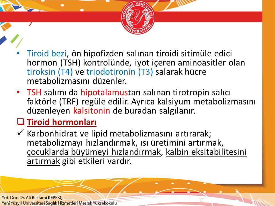 Tiroid bezi, ön hipofizden salınan tiroidi sitimüle edici hormon (TSH) kontrolünde, iyot içeren aminoasitler olan tiroksin (T4) ve triodotironin (T3) salarak hücre metabolizmasını düzenler.