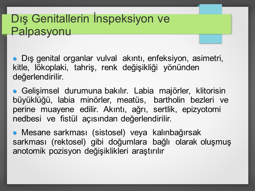 Dış Genitallerin İnspeksiyon ve Palpasyonu