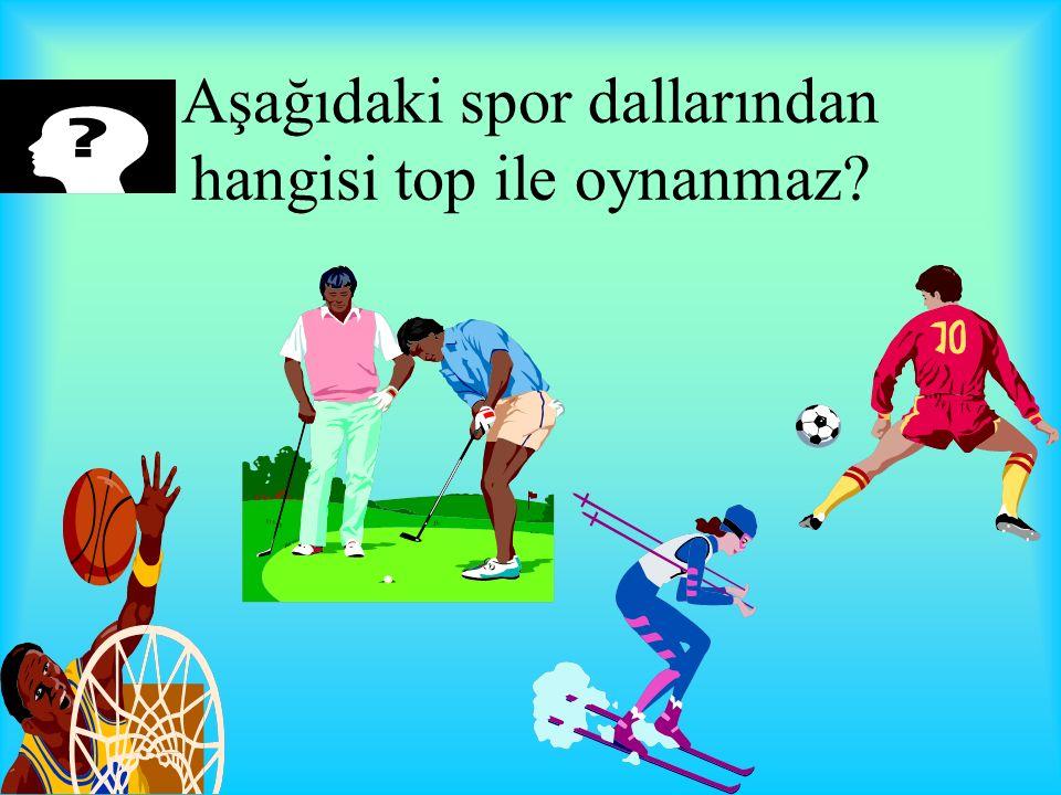 Aşağıdaki spor dallarından hangisi top ile oynanmaz