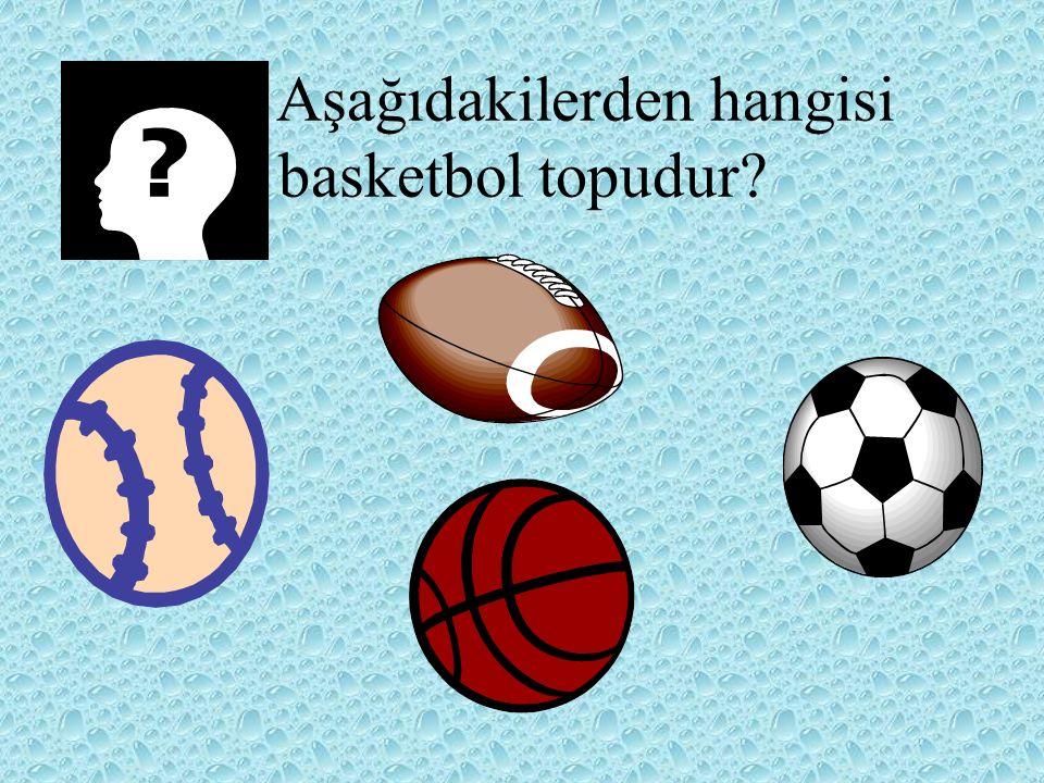Aşağıdakilerden hangisi basketbol topudur