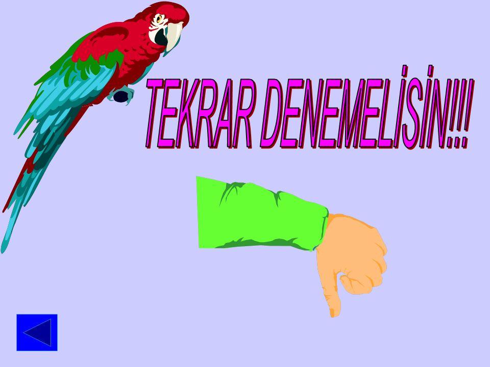 TEKRAR DENEMELİSİN!!!