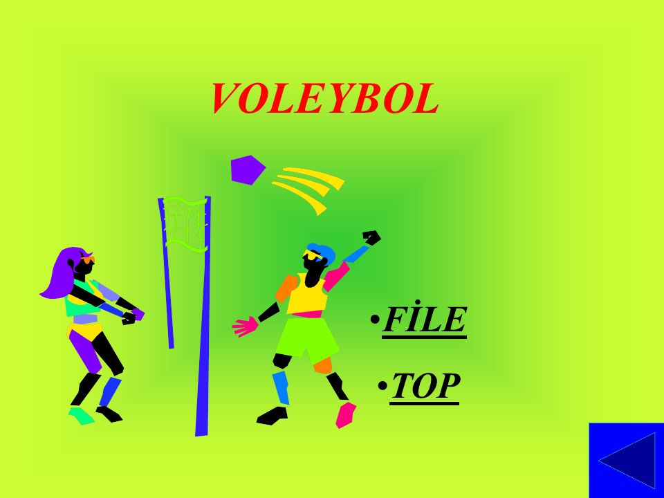 VOLEYBOL FİLE TOP
