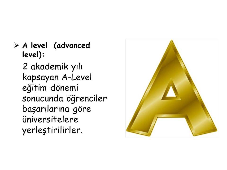 A level (advanced level):