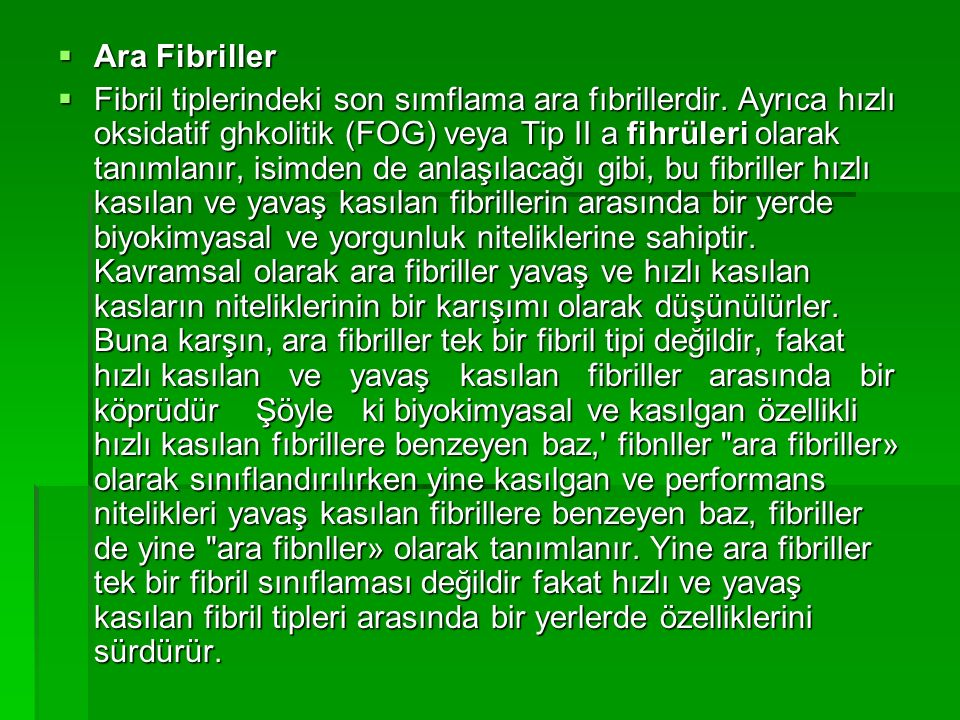 Ara Fibriller