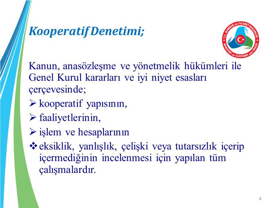 Kooperatif Denetimi; kooperatif yapısının, faaliyetlerinin,