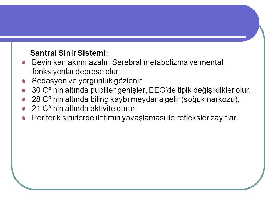 Santral Sinir Sistemi: